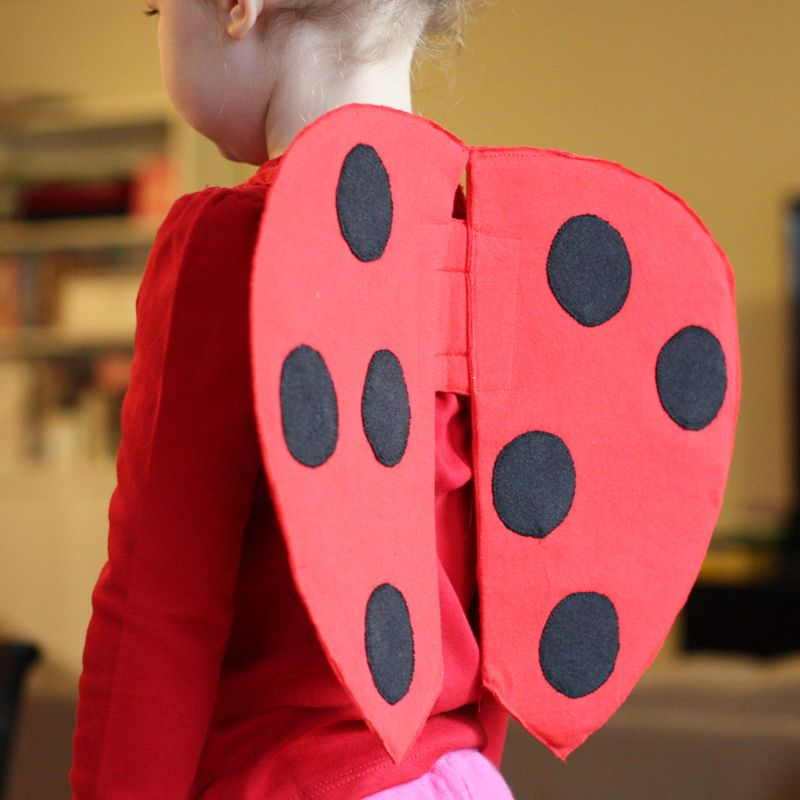 how to fix a ladybugs wing