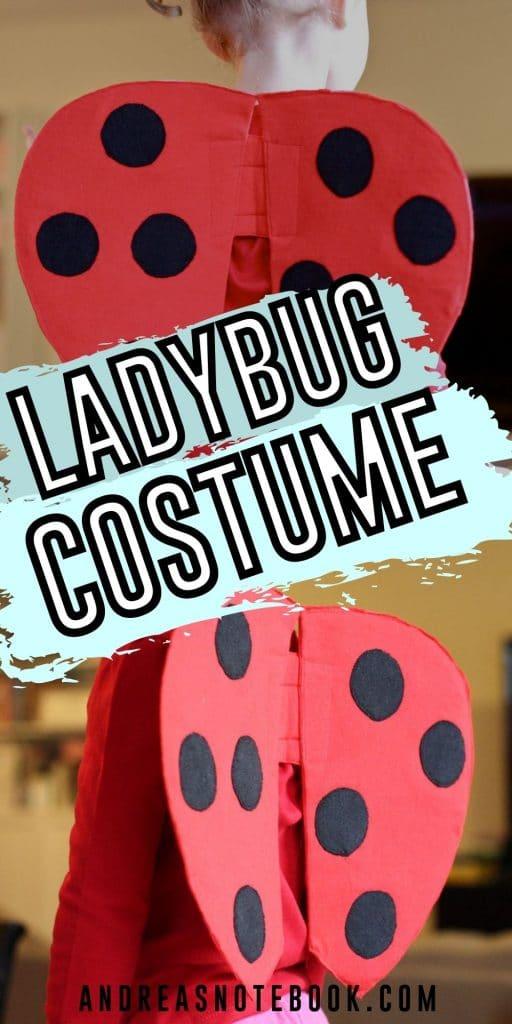 Super Easy DIY Ladybug Wings
