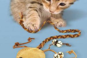 DIY leather cat toy tutorial