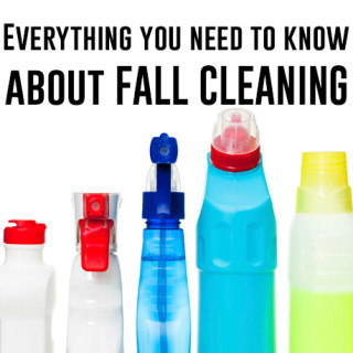 Fall Cleaning!