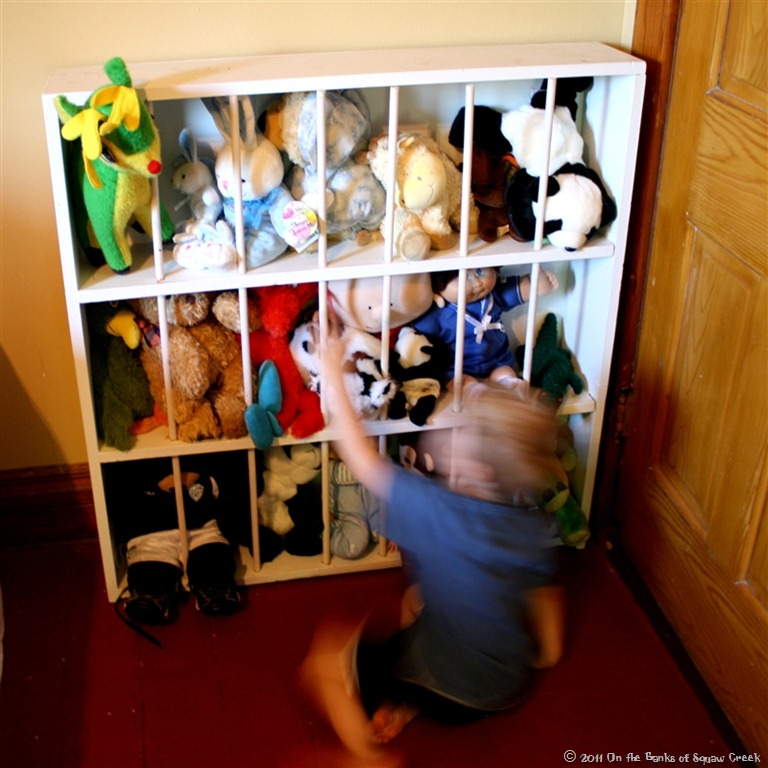 Build a toy zoo and dozens of other great toy storage solutions!