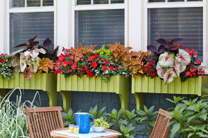 How to build window boxes |tons of great outdoor projects on andreasonotebook.com