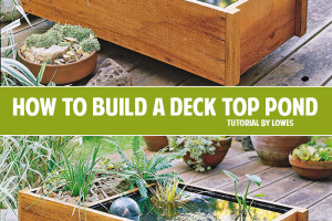 How to build a deck top pond and other fantastic outdoor DIY ideas!