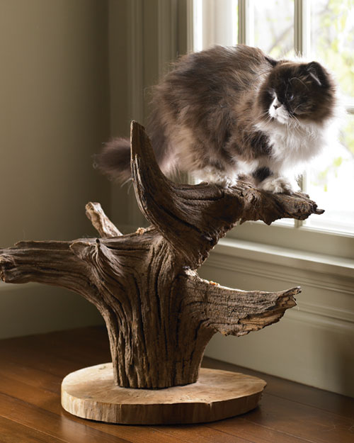 Make a unique cat tree! DIY instructions included.