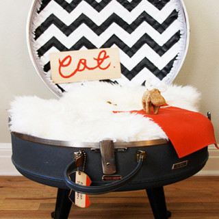 Make a cat bed from a suitcase