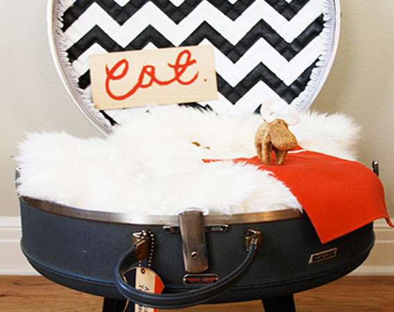 Make a cat bed from a suitcase!