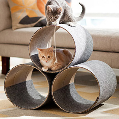 build a cat home!