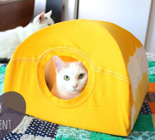 DIY cat tent pup up