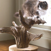 Make a unique cat tree!