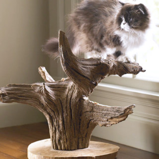 Make a cat tree from a tree