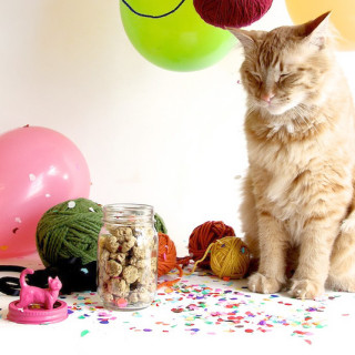 DIY yarn ball catnip toys