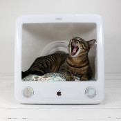 computer cat bed