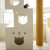 Make a DIY cat house!