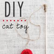 Fantastic DIY cat toy!