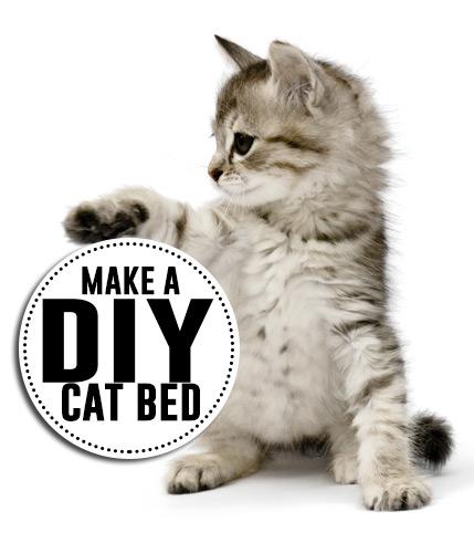 Make a cute DIY cat bed! Super cute tutorials!