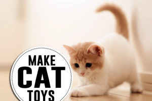 DIY cat toys to make!