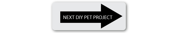 next-diy-pet-project