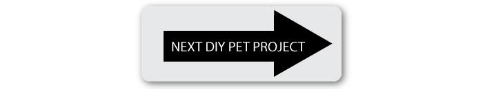 next-diy-pet-project