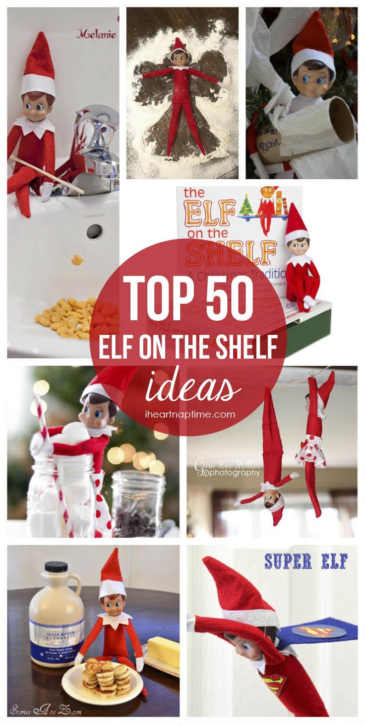 50 Elf on the Shelf ideas that you'll want to see!
