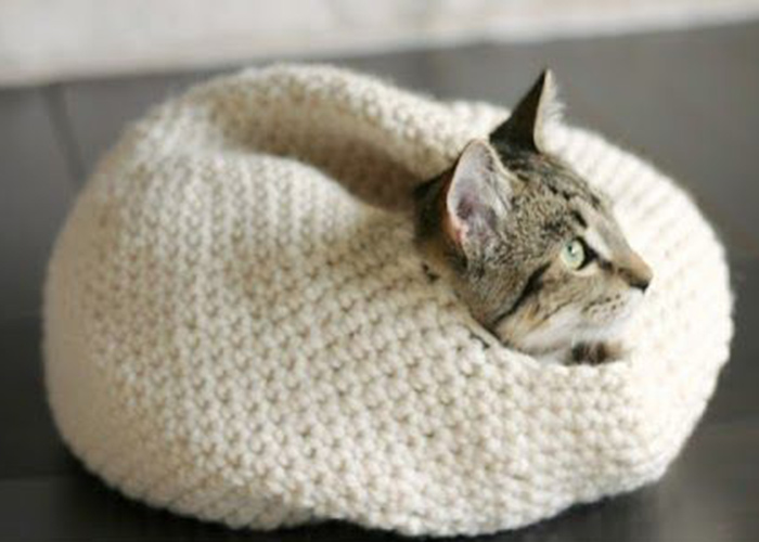 Free Crochet Pattern For A Cat Bed : cat-bed