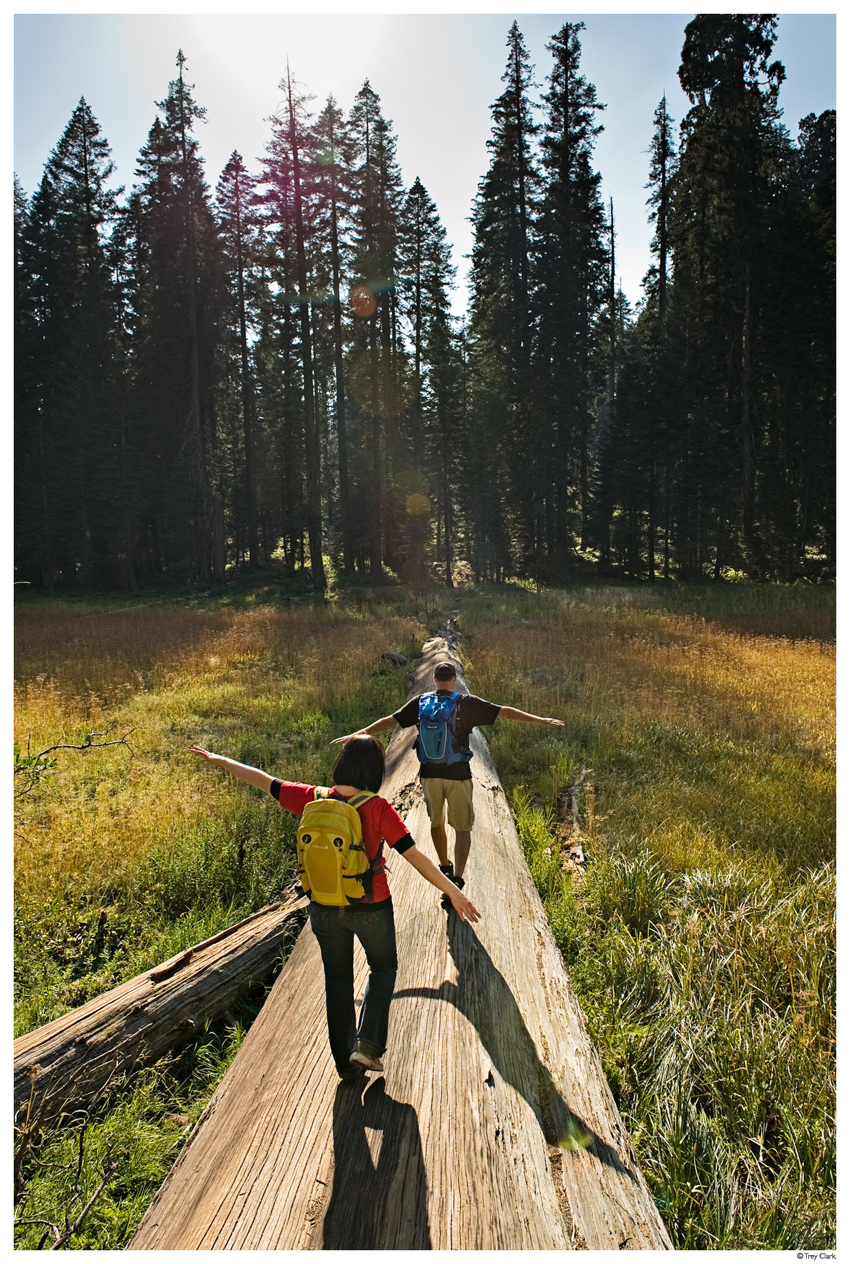 25 Family Vacations for Active Kids (Sequoia National Park)
