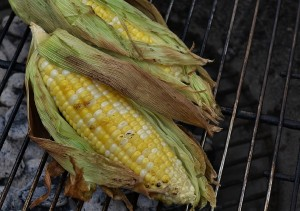 Roast corn in the cob in the husk over a campfire
