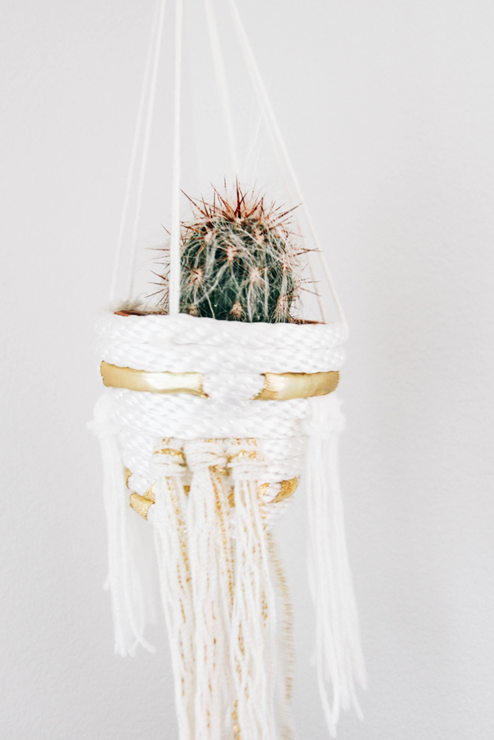 how to make a cactus planter with rope and ribbon