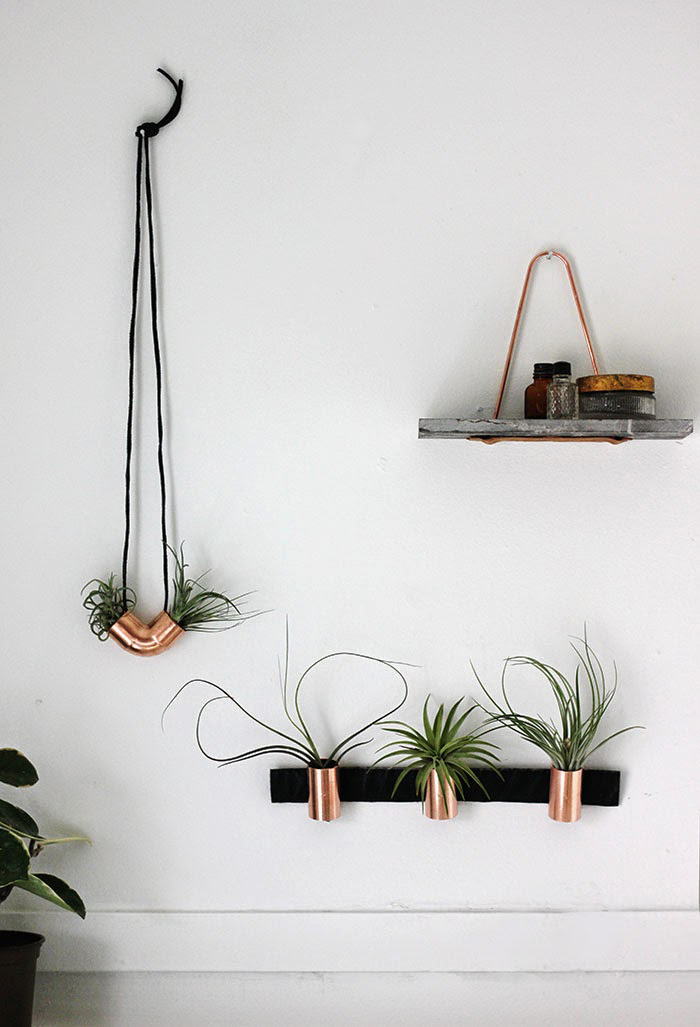 industrial style copper airplant DIY - 24 Ways To Hang Plants On The Wall - Andrea's Notebook