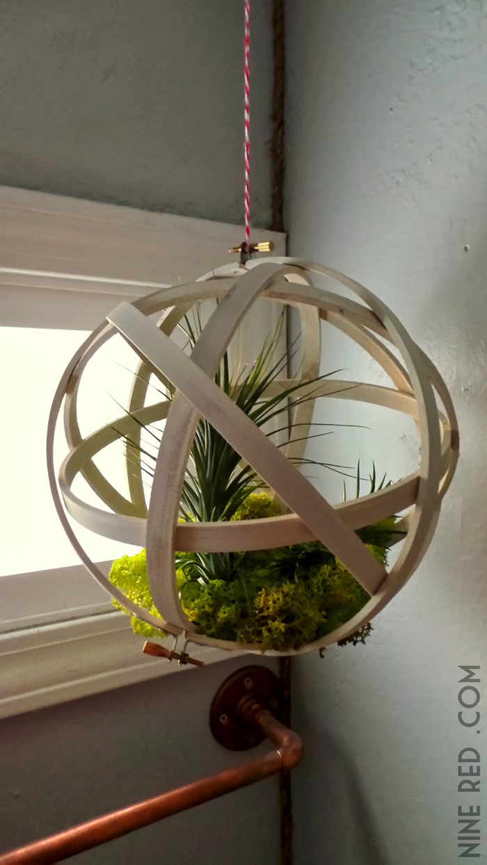 Repurposed Embroidery Hoops Make A Home For Air Plants