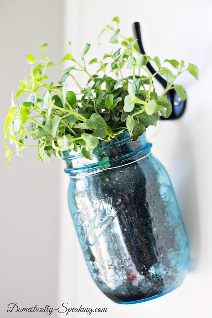 a mason jar herb garden for the kitchen!