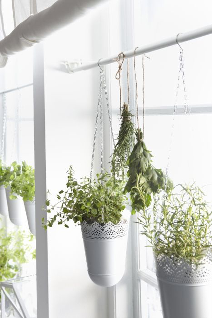 24 Ways To Hang Plants On The Wall Andrea 39 S Notebook
