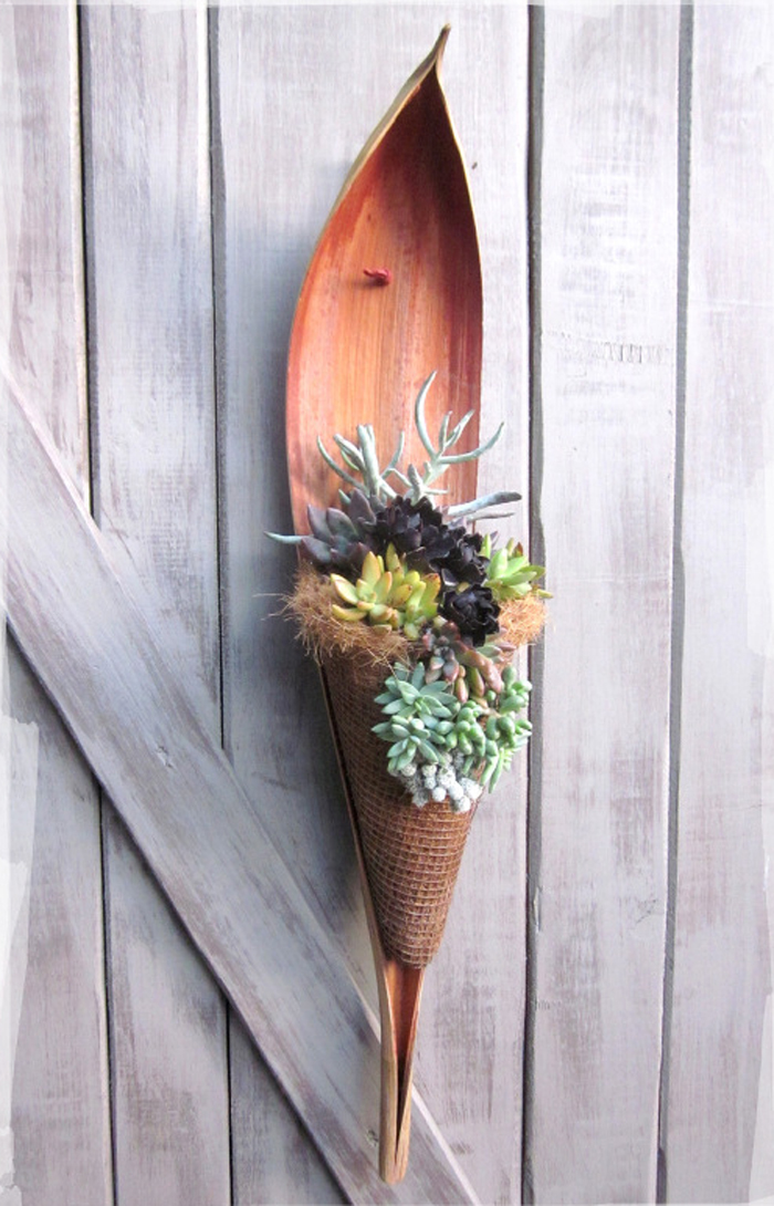 how to make a wall hanging with succulents and a palm tree scoop!