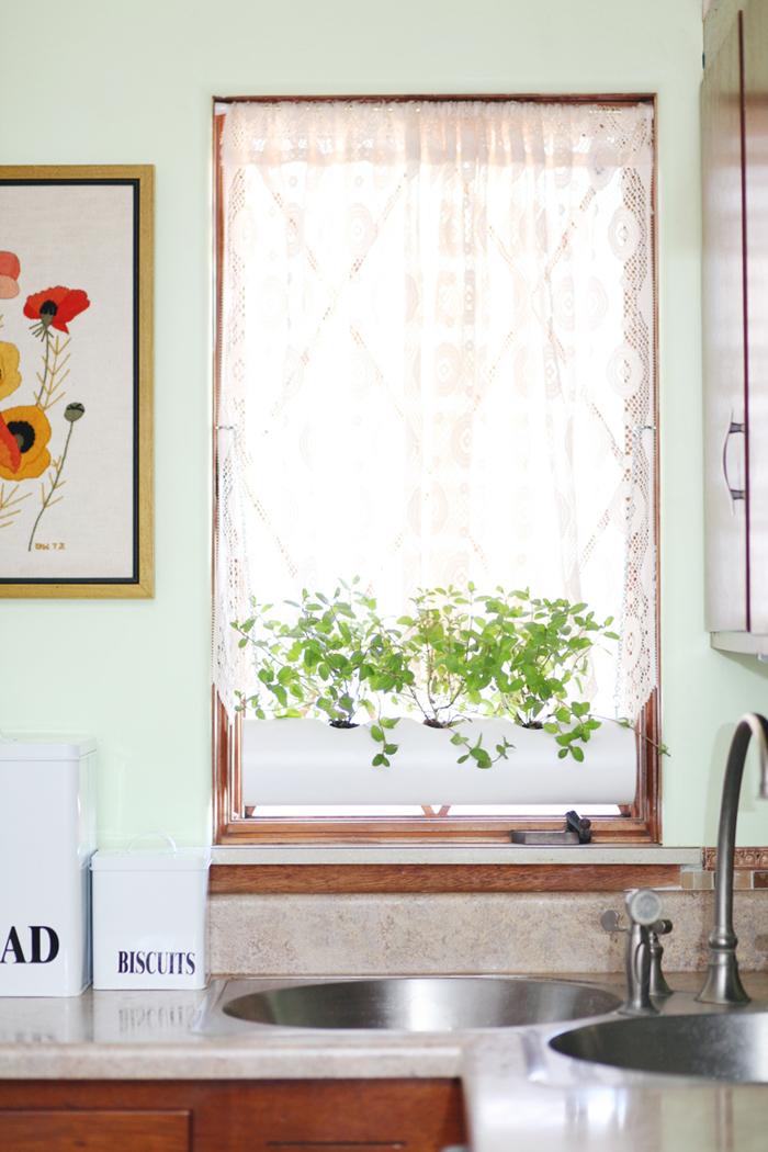 PVC pipe windowsill herb garden