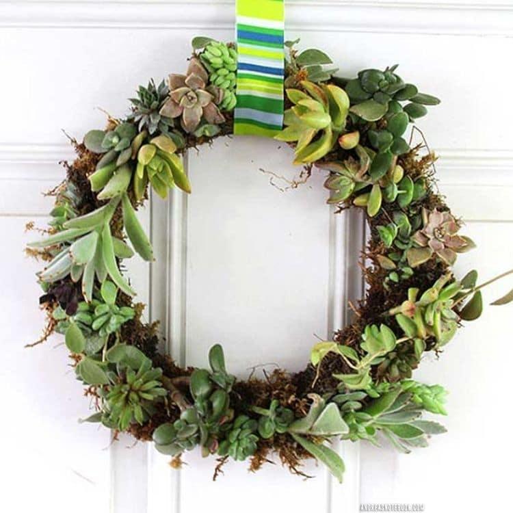 diy green succulent wreath hanging on white door