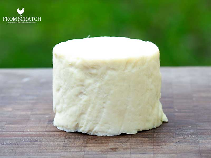 Make your own cheddar cheese! YUM