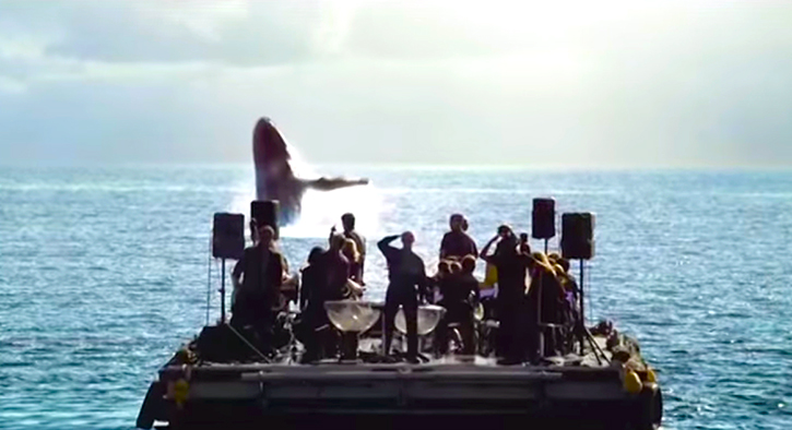 The orchestra wrote a love song for these whales. What happened was breathtaking.