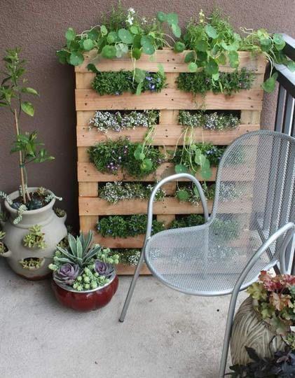 How to build a vertical pallet garden