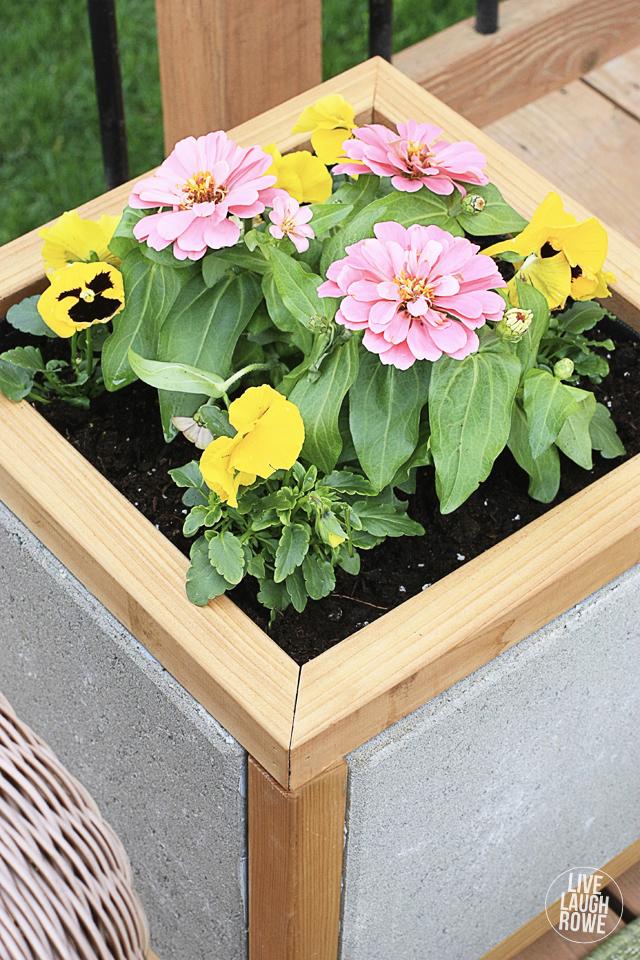 Diy Paver Planter Box Tutorial