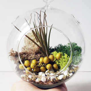 DIY Terrarium Tutorial - so cute & easy!