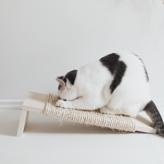 DIY Sisal Cat Scratcher Tutorial