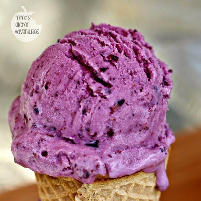 Blueberry Frozen Yogurt