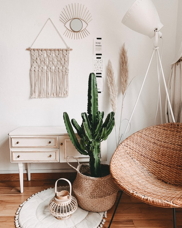 cactus white wall macrame indoor swing