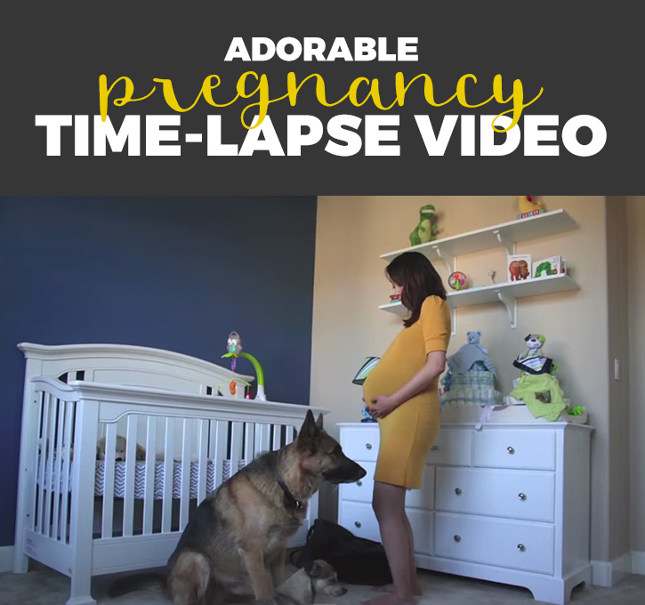 I love this adorable pregnancy time-lapse video! Watch the dogs!