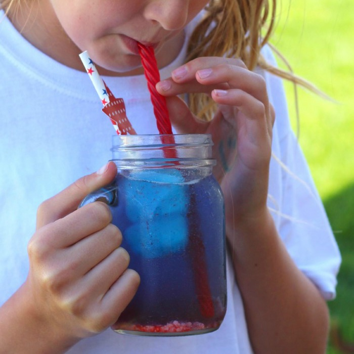 Easy Red, White and Blue Drink