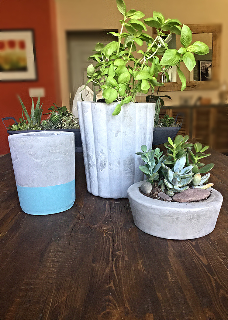 DIY Cement Planters for under $10