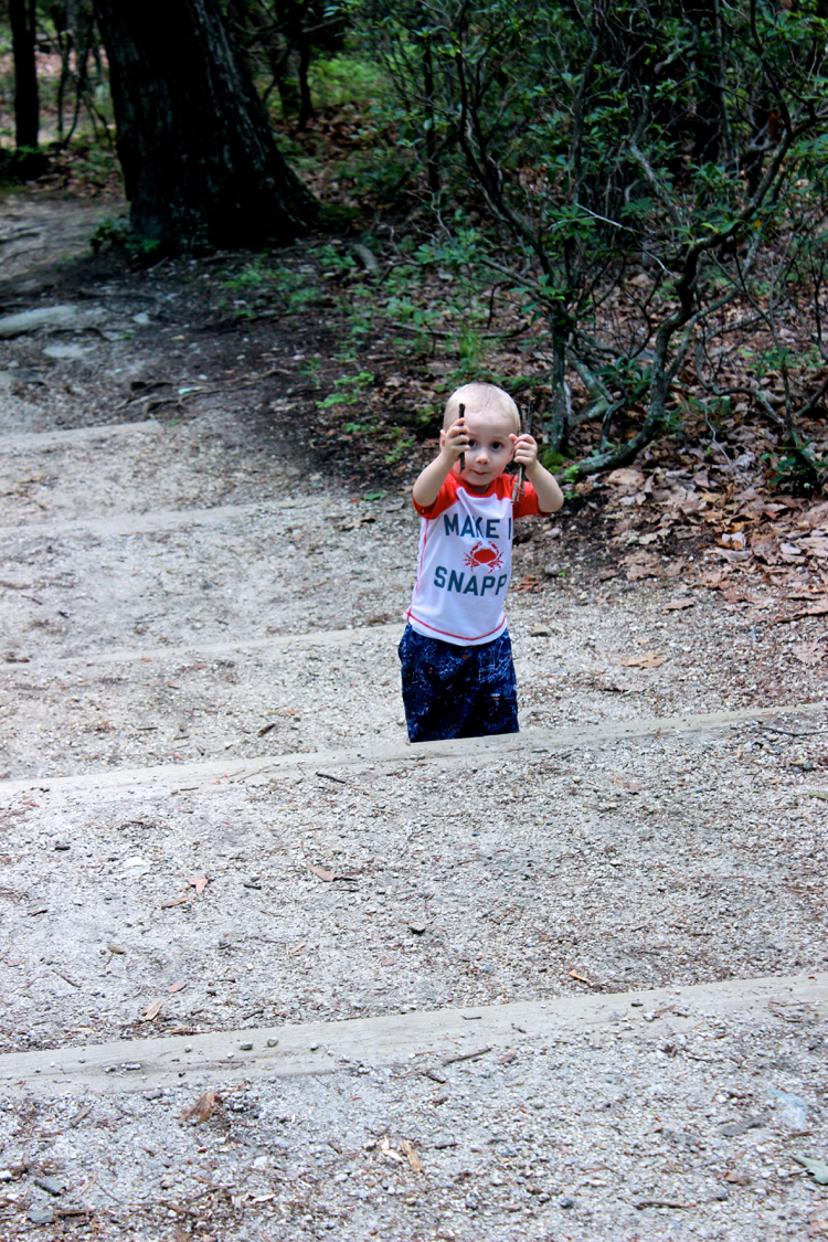 picking up sticks on your hike
