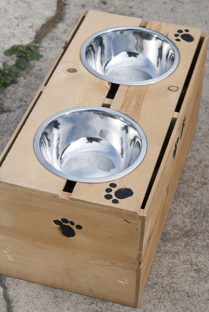 EASY: make your own DIY elevated dog feeder