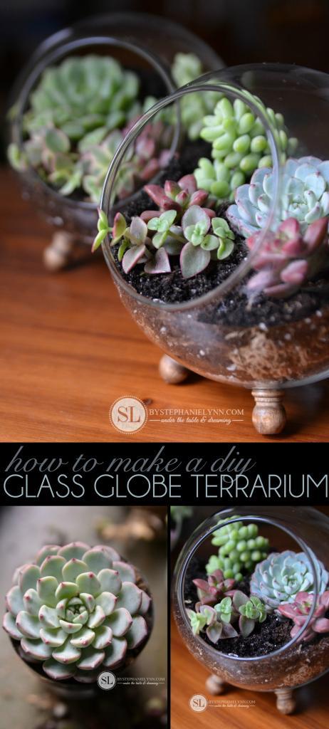 Gorgeous DIY terrarium