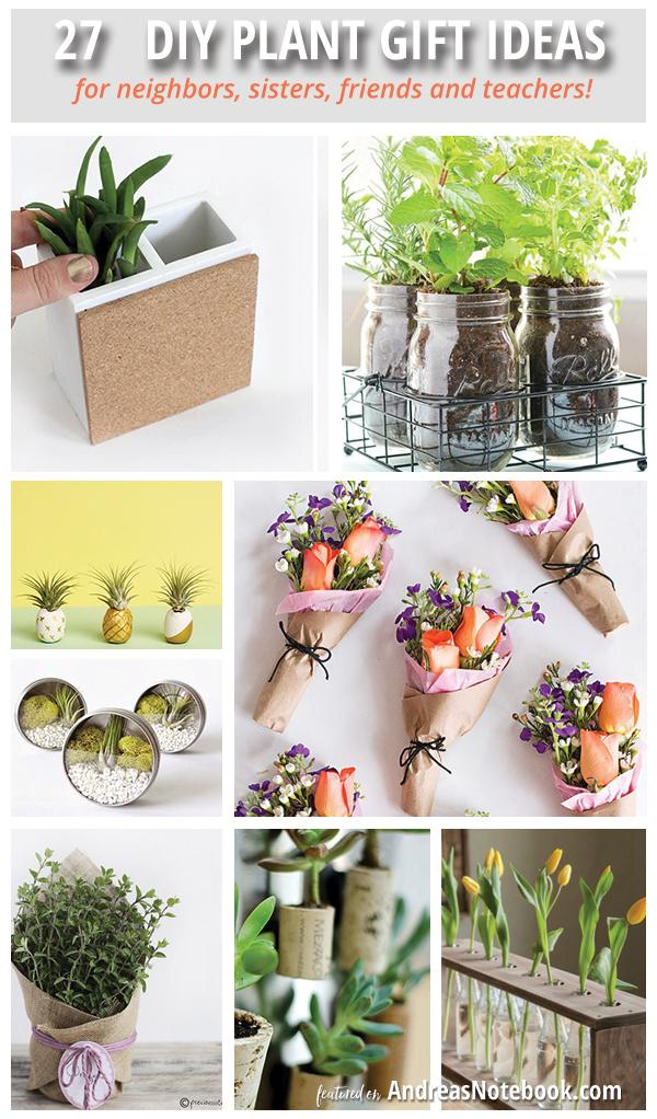 DIY plant gift ideas!