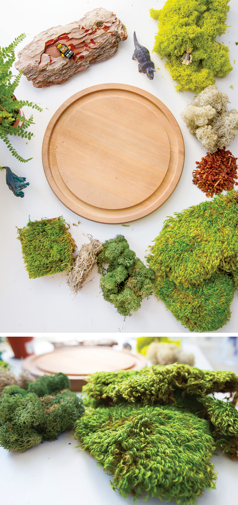 How to make a LEGO Jurassic World Fairy Garden